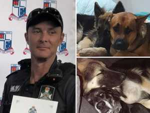 Cop charged over shocking deaths of neighbour's dogs