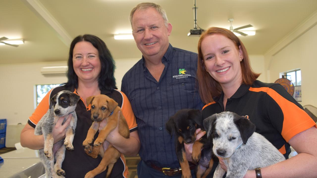 CQ Pet Rescue was one of four Central Highlands organisations that directly benefited from a $20,000 donation from Kestrel Coal in 2020.