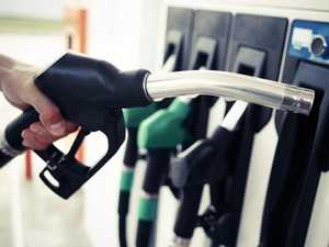 Huge call to ban sale of petrol cars