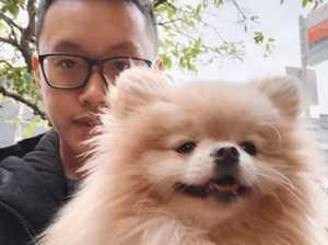 Ex-couple's wild court brawl over dog