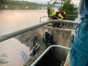 WATCH: Incredible rescue of woman from Fitzroy River drain