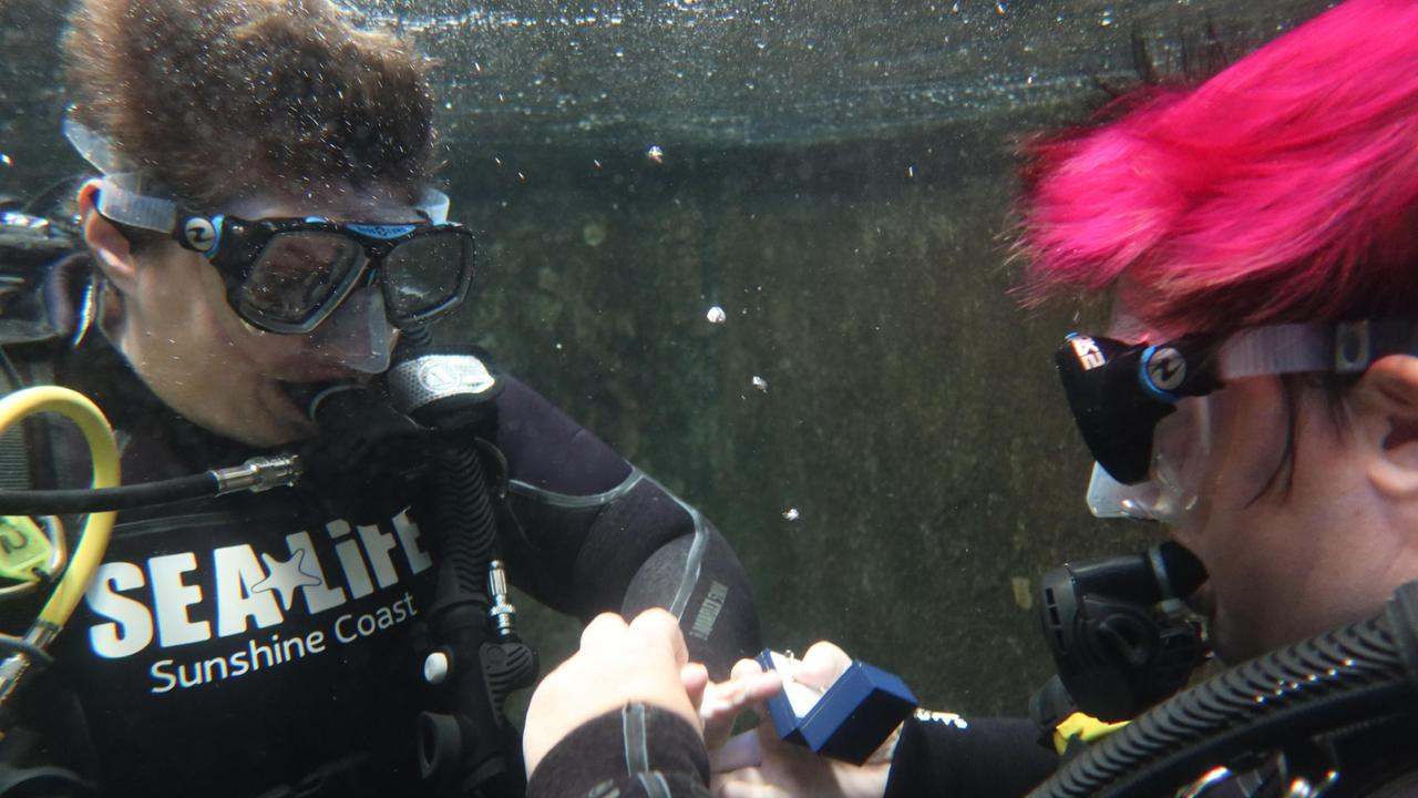 Stacey Blume proposed to Katie Stevens during a shark dive at SEALIFE Mooloolaba.