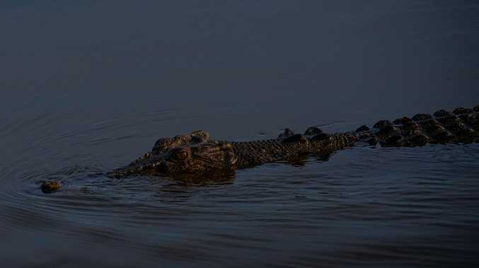 Crocodile spotted at popular Tannum Sands boat ramp