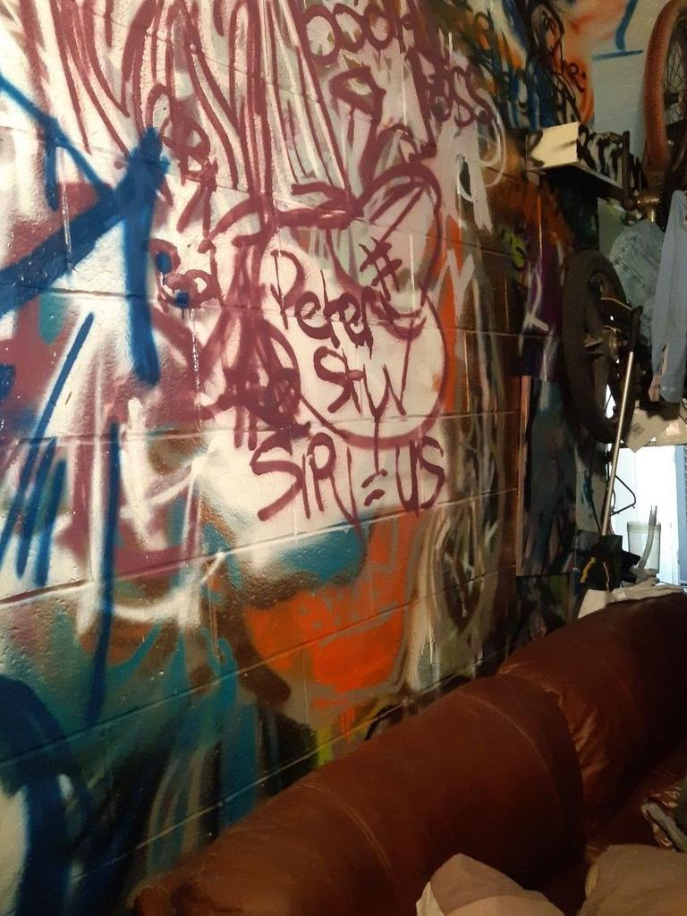 Graffiti and damage at a property. Picture: Supplied.