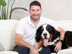 $25K in vet bills: Owners reveal startling cost of family pets