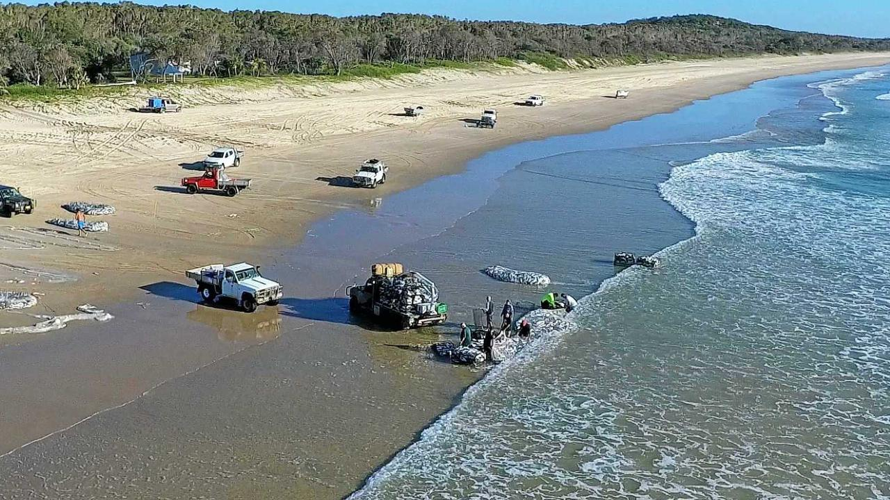 The state is investigating the dioxin level impacts on Noosa commercial fishing.