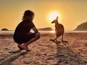 Net-free zones restore eco balance at popular tourist spot