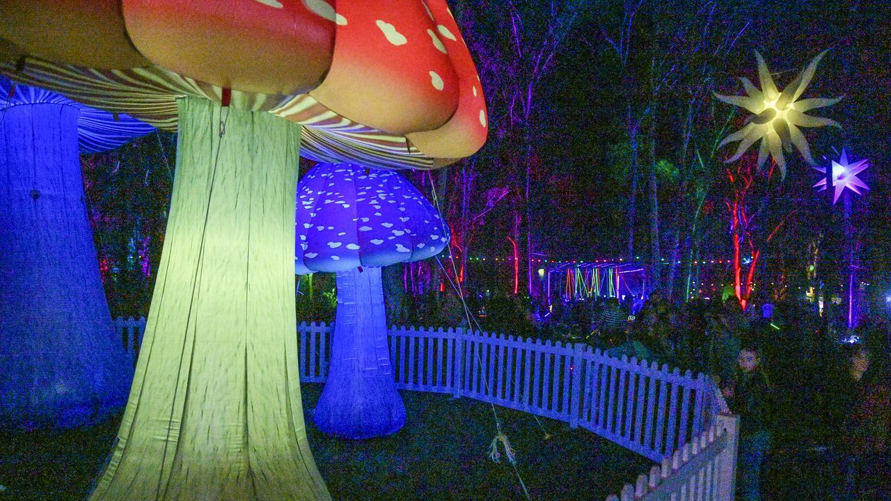Gladstone Regional Council's Luminous 2019 held at Tondoon Botanic Gardens.