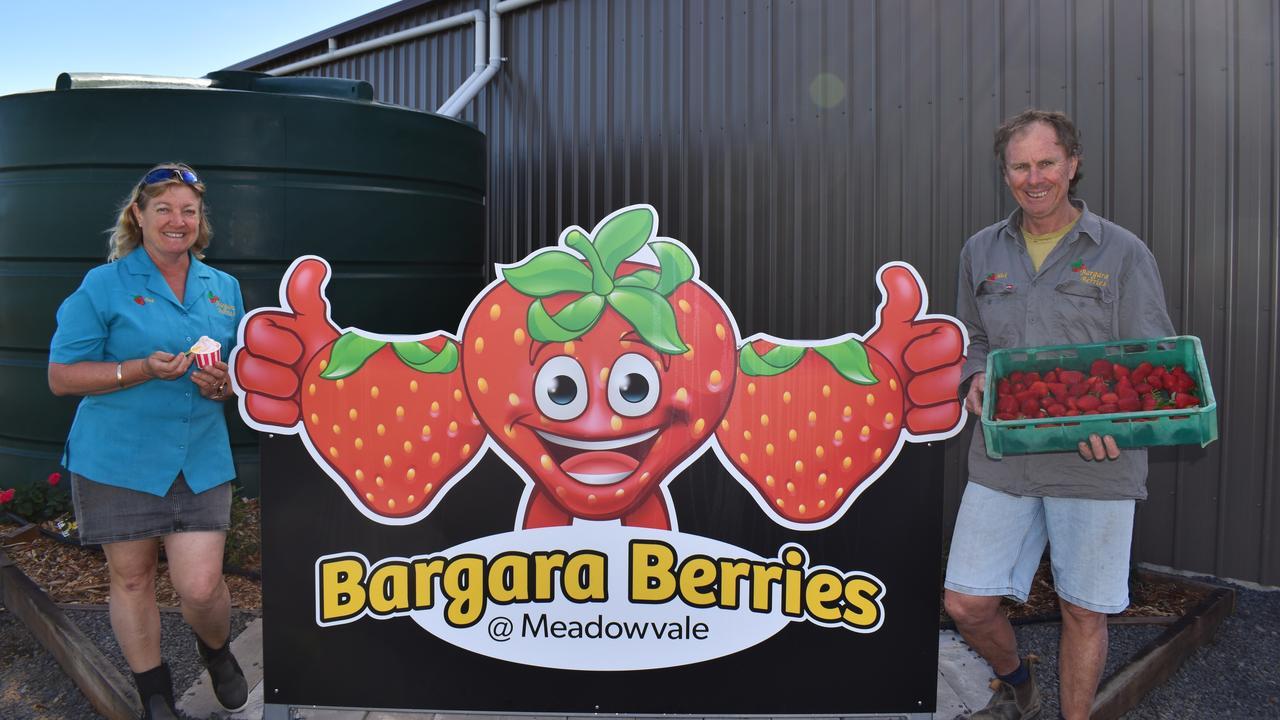Debbie and Michael Meiers of Bargara Berries. Photo: Rhylea Millar.
