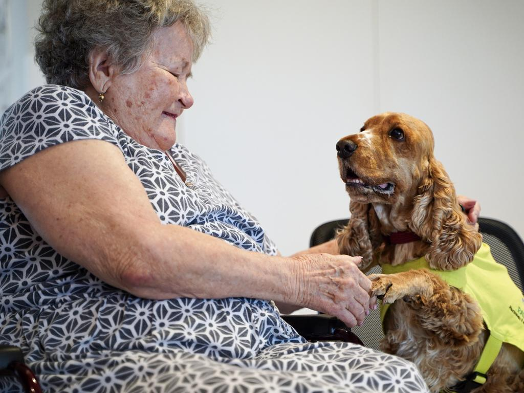 Elvie Fawcett looks forward to the weekly visit from Sunni the spaniel at Ozcare Mackay Aged Care Facility. Picture: Heidi Petith