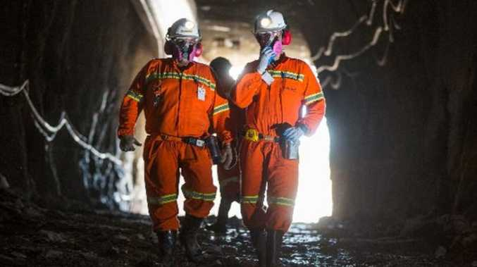 Virus threatens Brazil cut: OZ Minerals