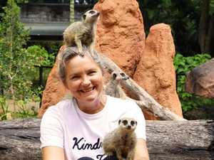 Meet the meerkats: Enter now to be in the running