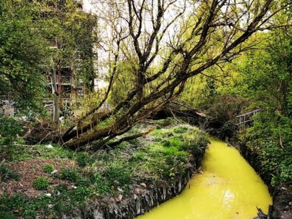 The Polmadie Burn has been turned yellow from toxic chemicals.