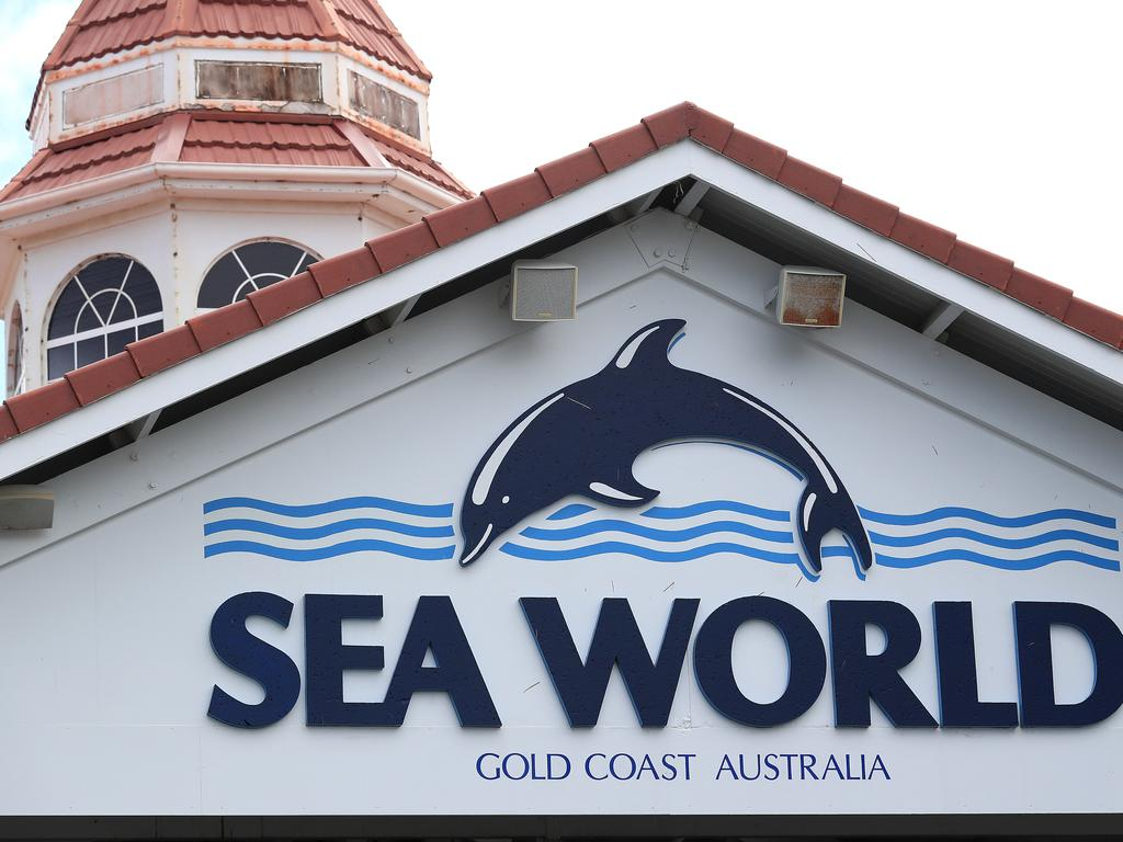 The toy had been purchased from Sea World four days before the incident. Picture: Adam Head