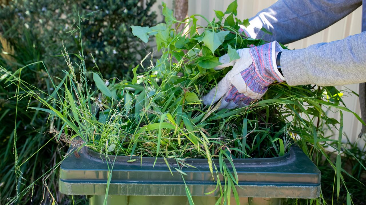 Ipswich councillors voted unanimously to run a promotion encouraging residents to opt into the green waste service during the Ipswich Show this month.