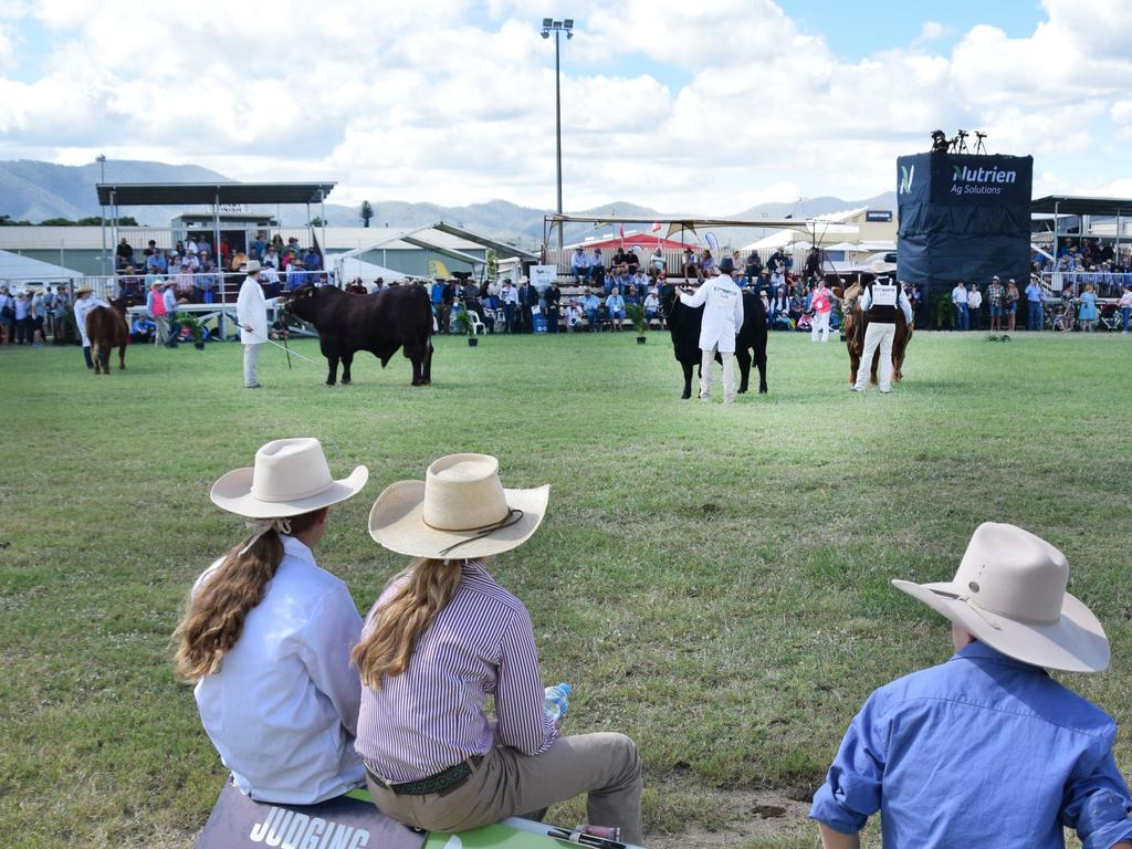 RGS Show Cattle team awaits results of the Junior Parading competition at Beef Australia 2021