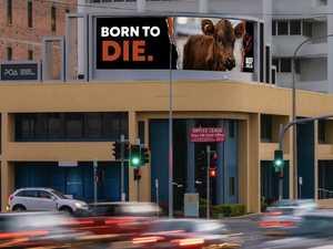 Activists target Beef Australia with 'disruptive' billboards