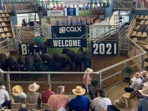 Sale of Champions delivers $3.6m at CQLX