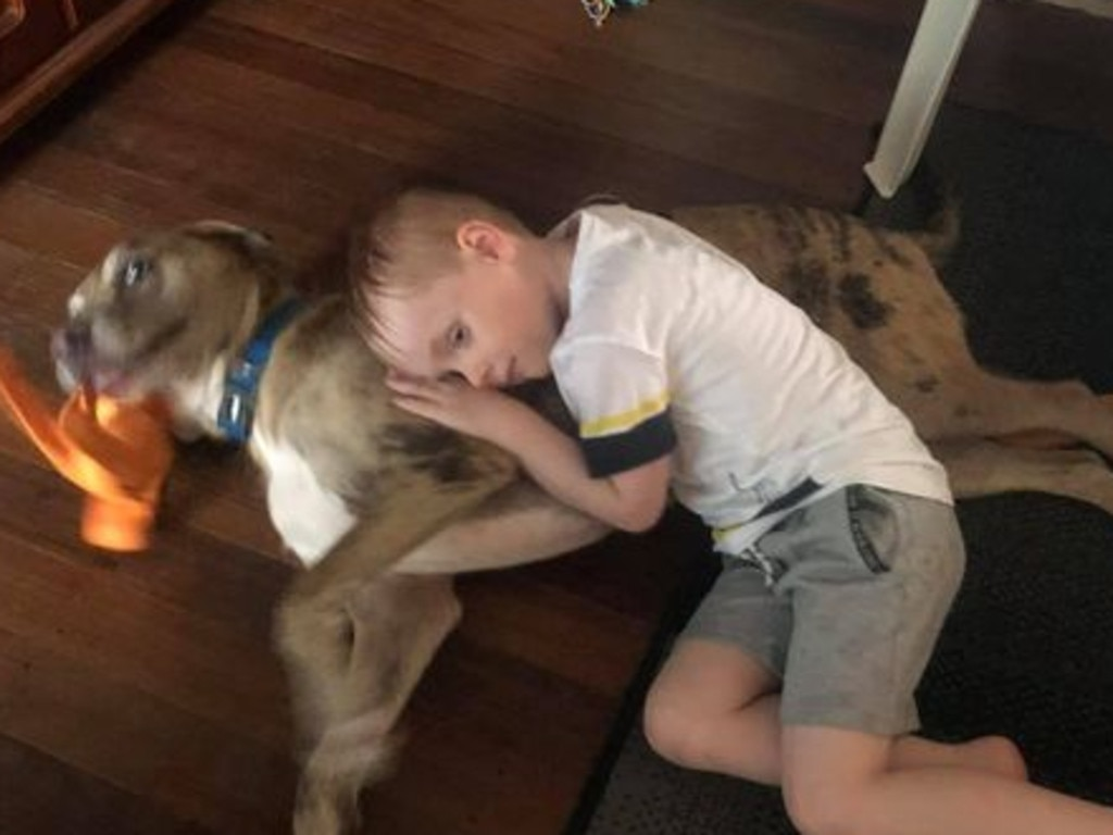 The six-year-old boy was found in his bedroom having reportedly been injured by a SeaWorld toy. Picture: Facebook via NCA NewsWire