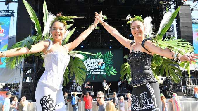 Popular music festival in tune for major comeback