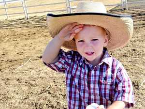 Little Lachlan watches big kids in action at Beef Australia