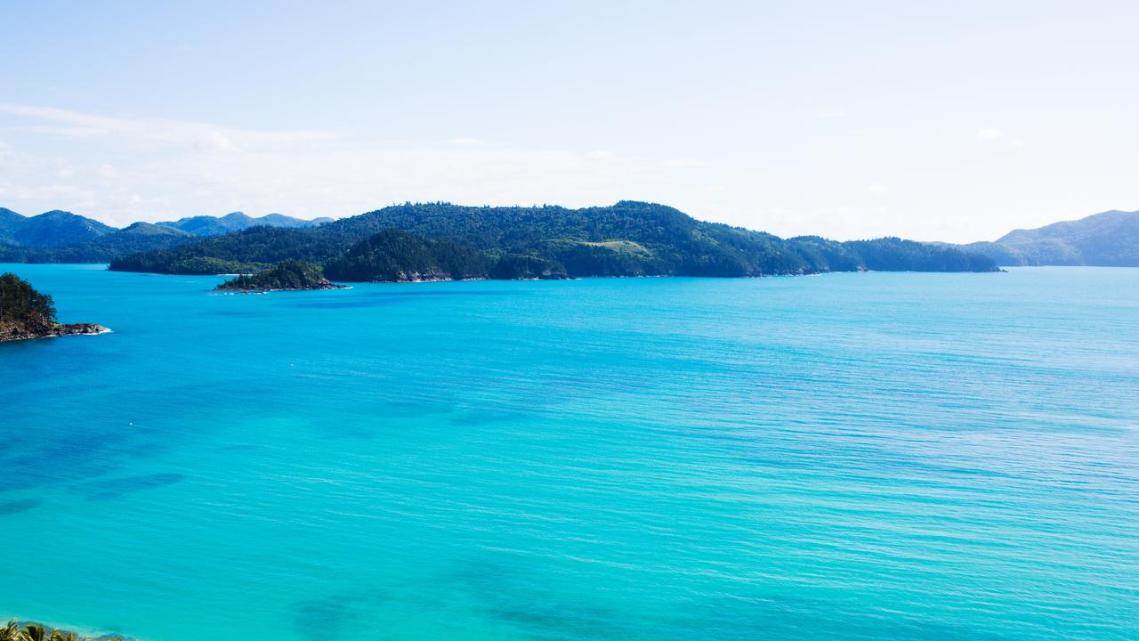 Former Hamilton Island have made horror allegations about their time working on the island.