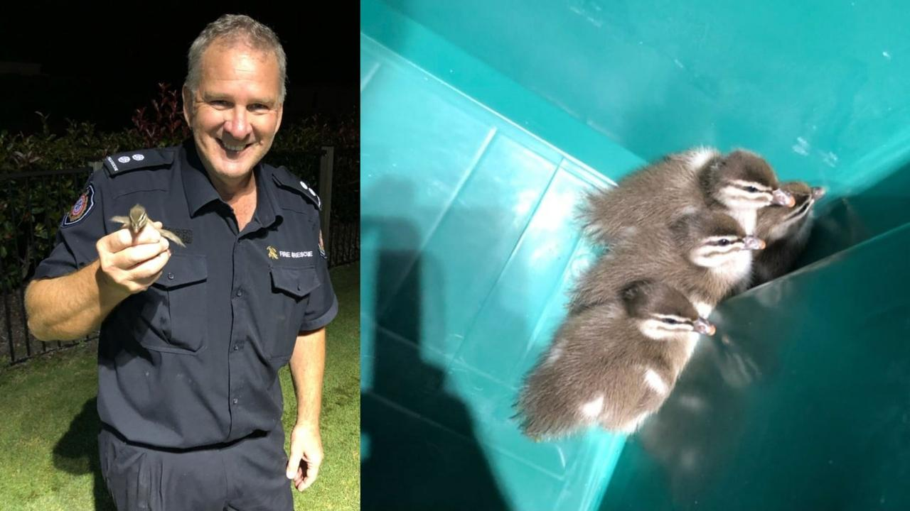 Caboolture Fire Brigade station officer Jeff Barker has signed off on a 38-year-old firefighting career after a successful rescue mission involving four ducklings stuck in a drain.