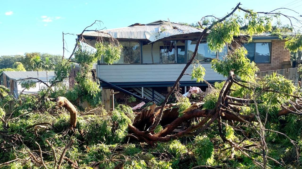 A home on Holly Green Crescent, Palmwoods, was struck by a falling tree during Wednesday night's severe storms.