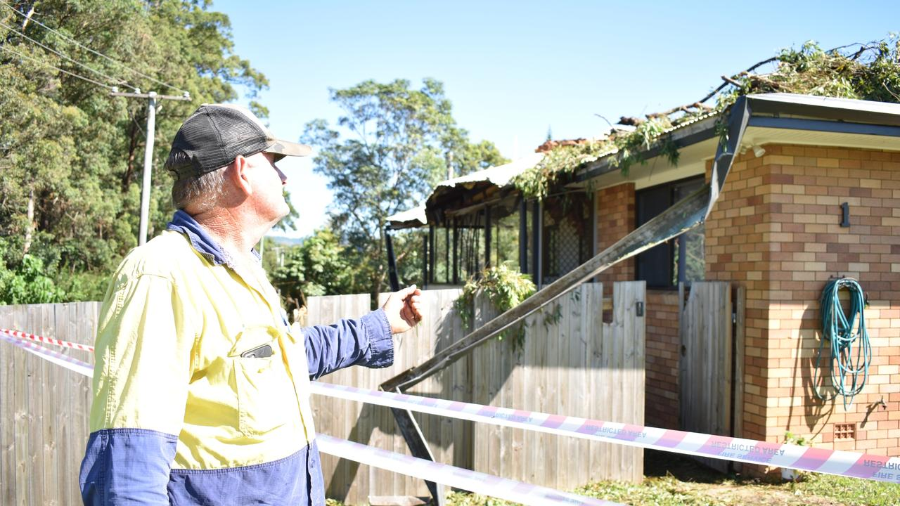 A 120-year-old tallowwood tree crashed down onto Jeff Twist's Palmwoods property on Wednesday night during a wild hailstorm.