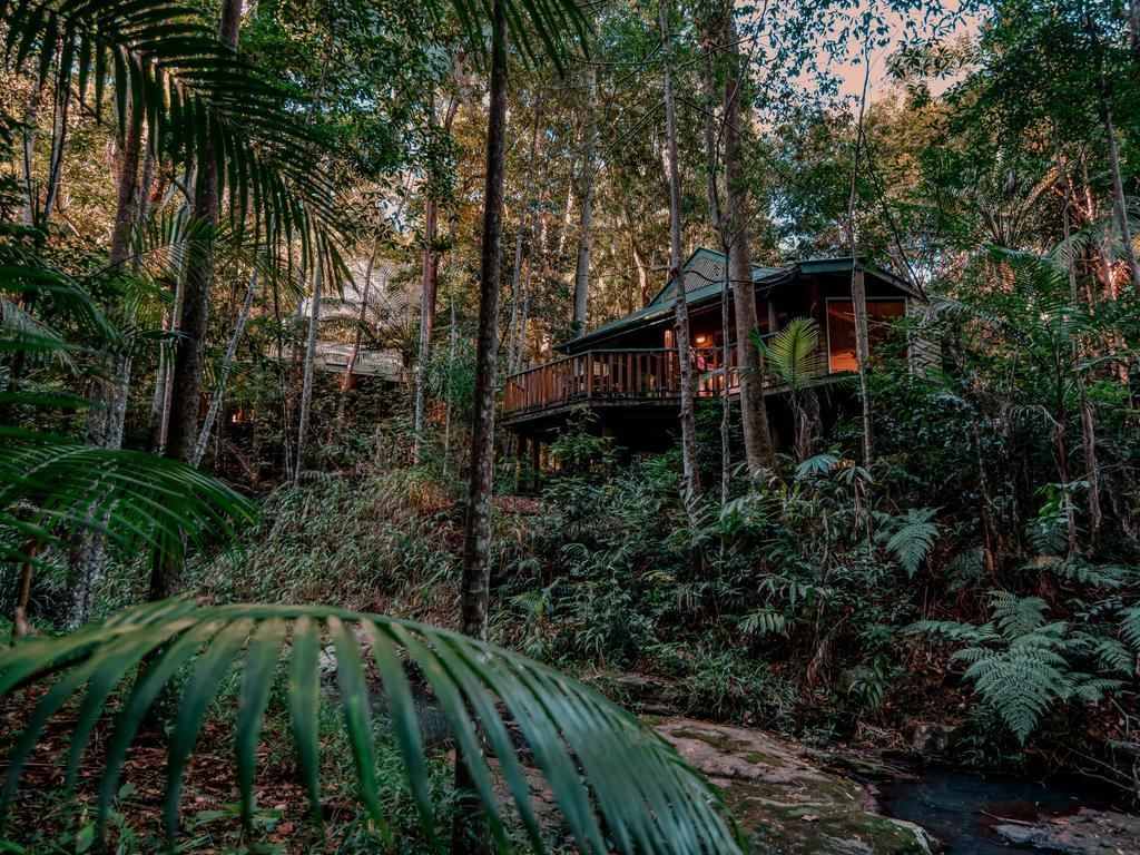 Narrows Escape Rainforest Retreat, named world's most romantic hotel by TripAdvisor - Photo Supplied