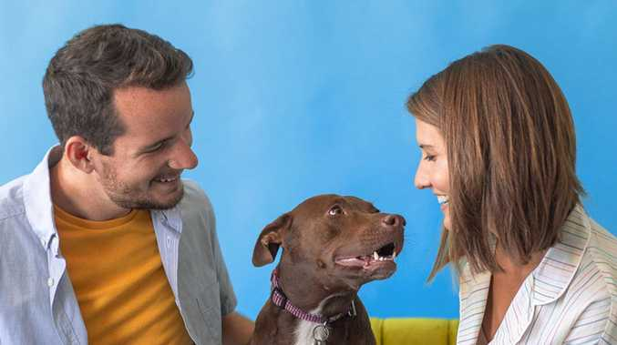 'I love you': The incredible story of the talking dog