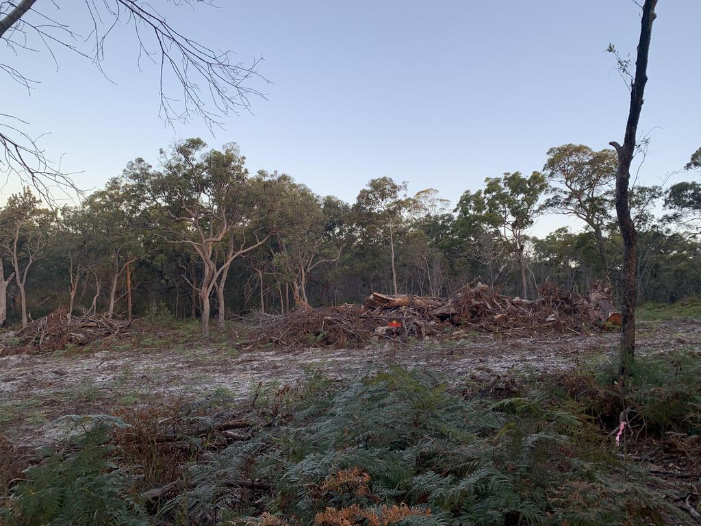 Cleared land at Point Lookout on North Stradbroke Island. Picture Supplied