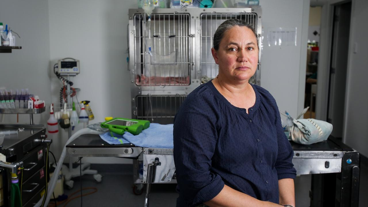 Veterinarian suicide crisis emerges in Australia as more vets call for solutions to save lives