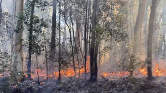 Bushfire under control after blaze broke out in Beerwah