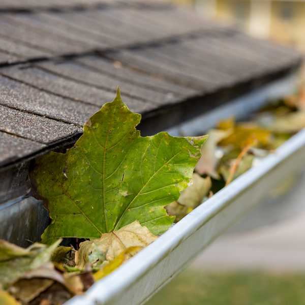 Leaving critical outdoor maintenance can lead to dire circumstances.