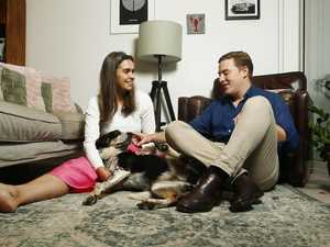 Massive impact a pet can have on your lifestyle