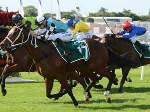Star horse killed in Magic Millions crash