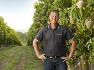 Farmers warn of national fruit shortage if no workers found