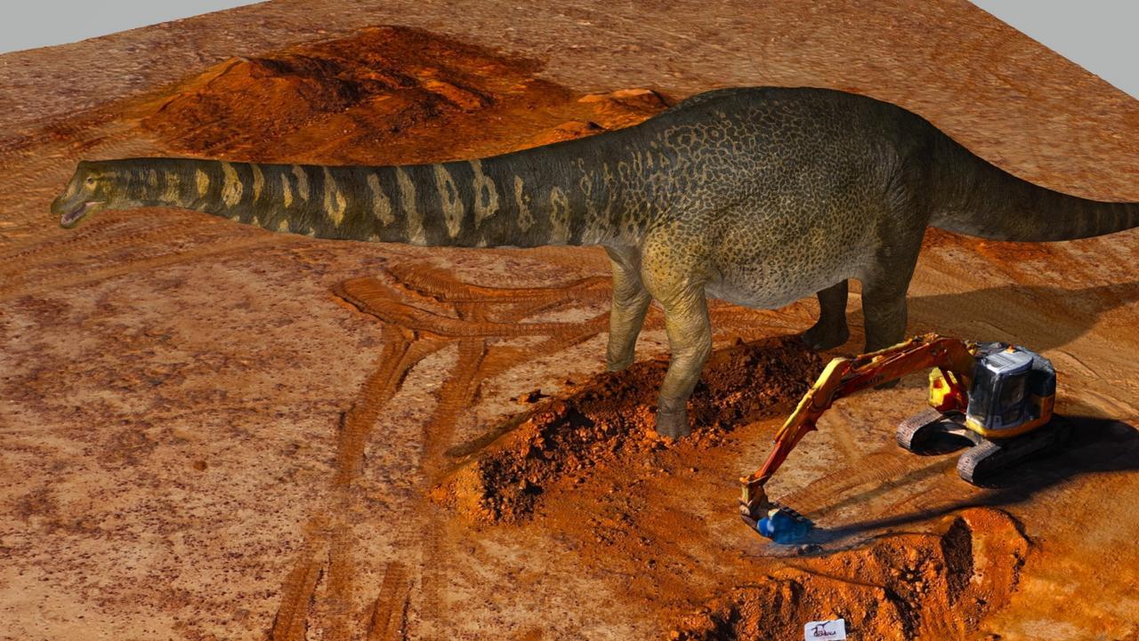 The species was found in Cooper Creek in Queensland.