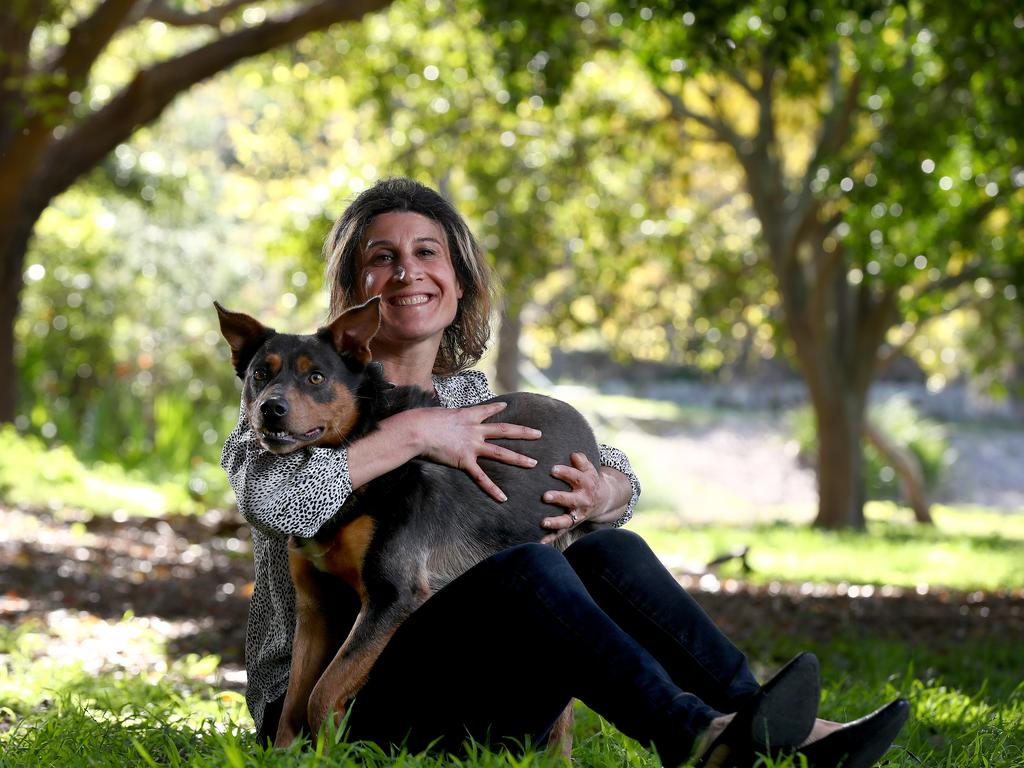 SMARTdaily's vet columnist Dr Magdoline Awad. Picture: Toby Zerna