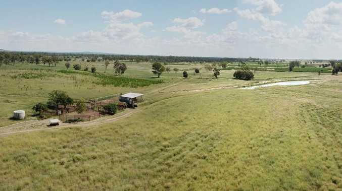 Livestock property sells under the hammer for $1.575 million