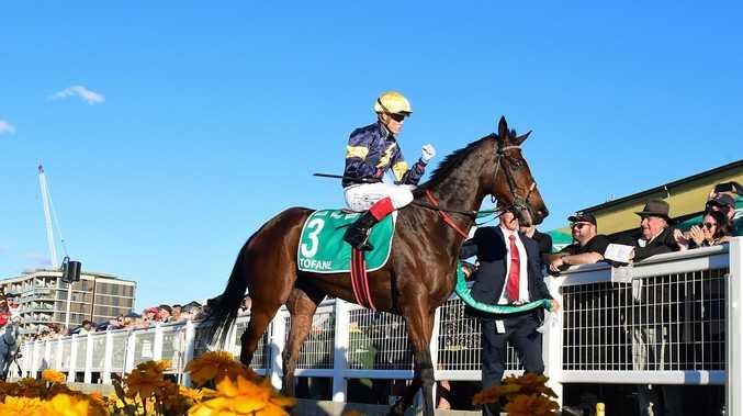 Leading trainers, jockeys show faith in Ipswich's big day