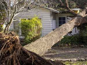 Scammers target Victorian storm victims