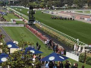 Odds on crowd numbers at Melbourne Cup