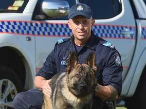 Hero police dog killed in the line of duty