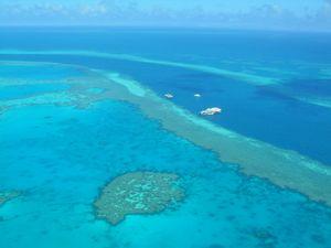 Earthquake felt on Great Barrier Reef