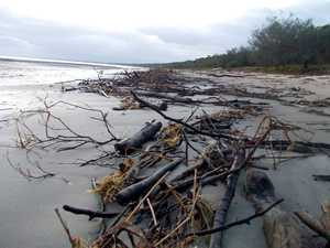Rain and tides delay Toogoom foreshore and beach clean-up