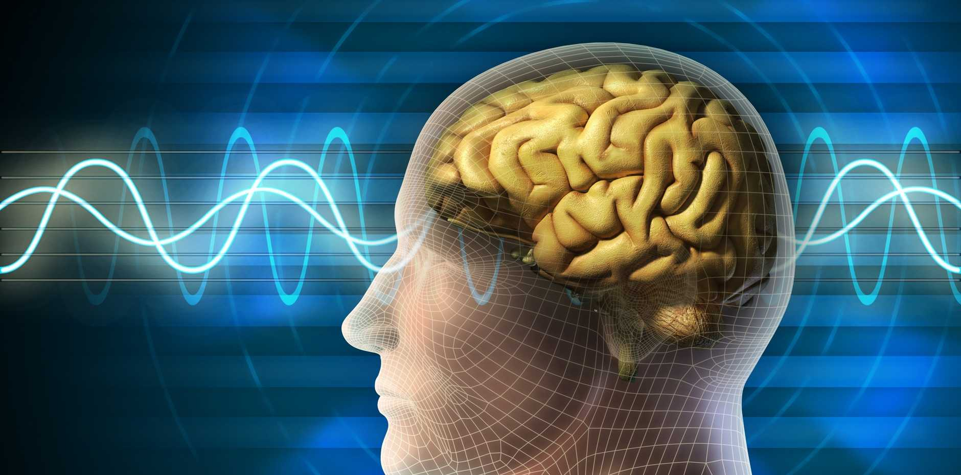 Wiring your brain for SUCCESS