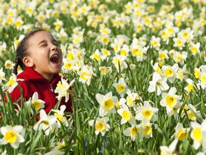 Do this one thing on Daffodil Day