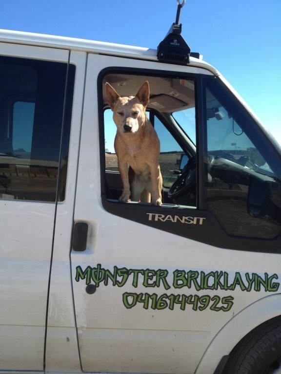 Missing dog in Gladstone.